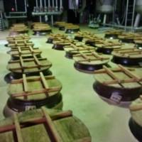 鹿児島県薩摩郡の小牧醸造様を訪問